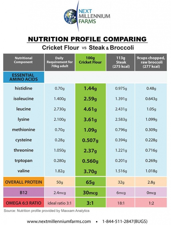 comparative chart cricket meat broccoli future food