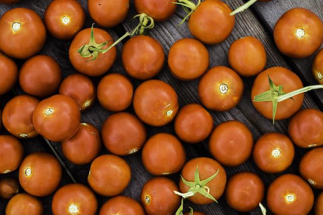 Organic Tomatoes Lawrence Miglialo Valhalla Farms